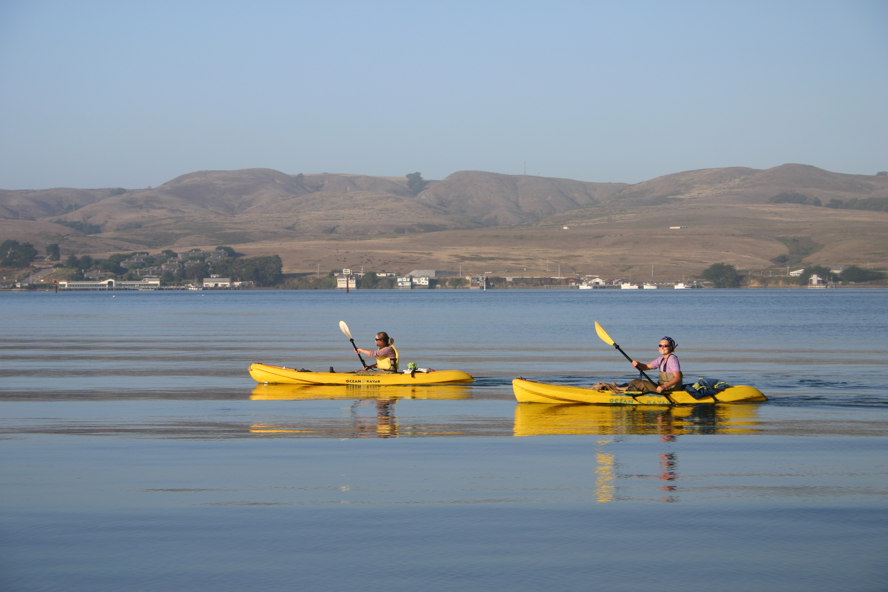 Researchers on Bodega Bay